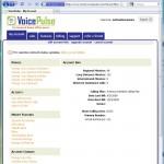 blog-voicepulse1